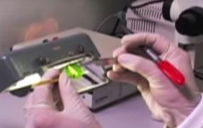 022: Tuta absoluta Test Method Video