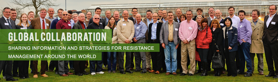Global collaboration<br />