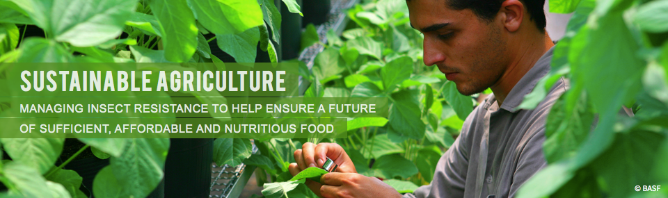 Sustainable Agriculture<br />