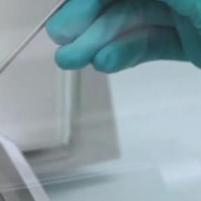 001: Myzus Persicae Test Method Video
